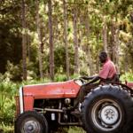 barney-tractor-web