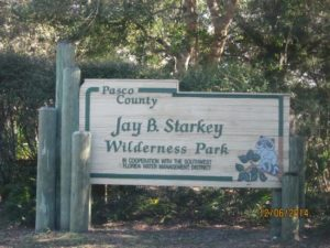jay-b-starkey-wilderness